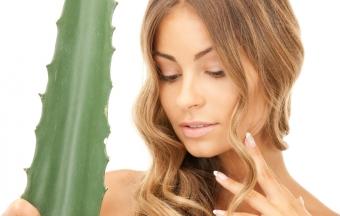 Эффективные маски из алоэ для здоровья волос