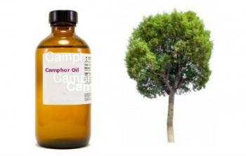Камфорное масло для волос